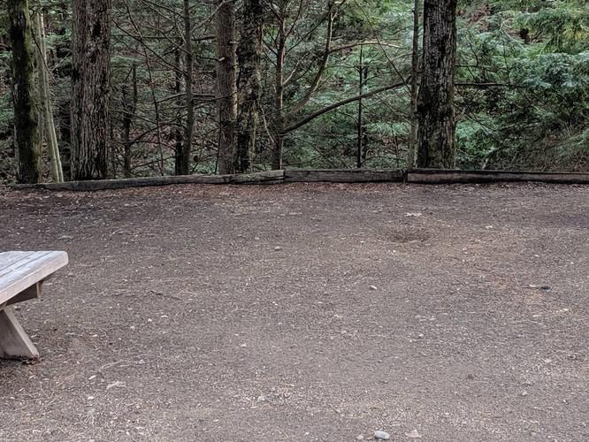 empty site - smaller.jpg