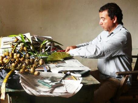 """""""Colombia está sentada sobre una mina de oro vegetal"""": experto Universidad Nacional"""