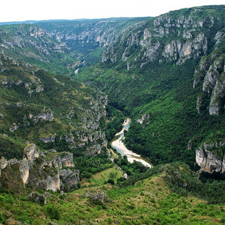 Parc-National-des-Cévennes-3.jpg