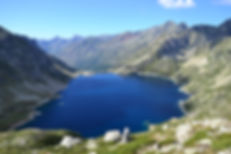 daylight-grass-lake-166646.jpg