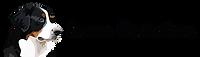 Denne Illustrations Logo tr-01.png
