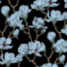 ninaschulze magnolia.jpg