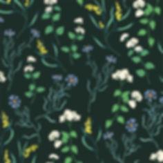 ninaschulze wildflower.jpg