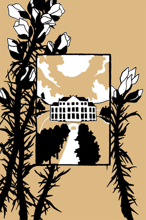 Mansfield Park -  Book Cover Design