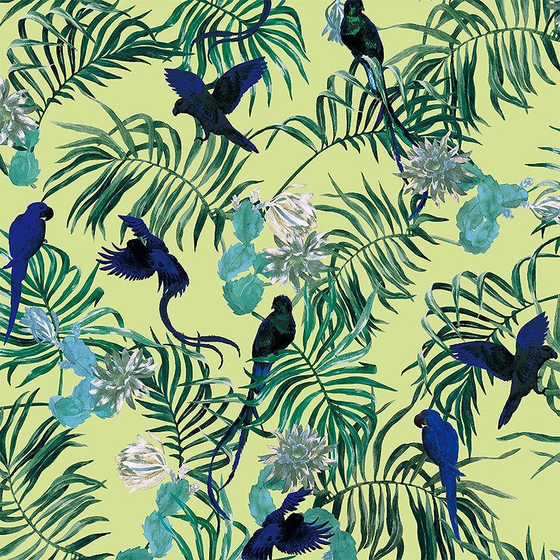 ninaschulze palmbirds2.jpg