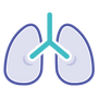 lung.png