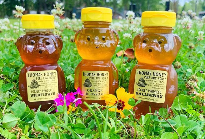 HoneyBearTrio.jpg