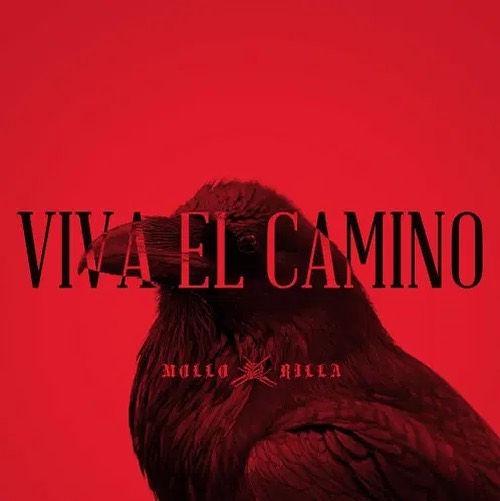 VIVA EL CAMINO.jpg