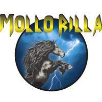 Mollo Rilla Logo 2.jpg