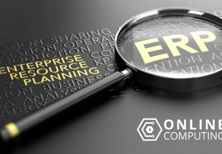 Guidelines for Effective ERP Training