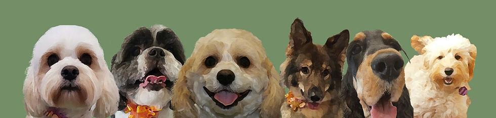 dog grooming-portsmouth.jpg