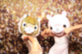 Gold Glitter Backdrop 2.jpg