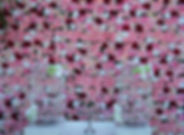 Tripple Wildberry Flower Wall EH Photo B
