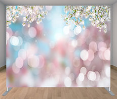 backdrop cherry blossom.jpg