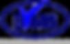 BVMS-logo-bonn-köln-euskirchen-düsseldor