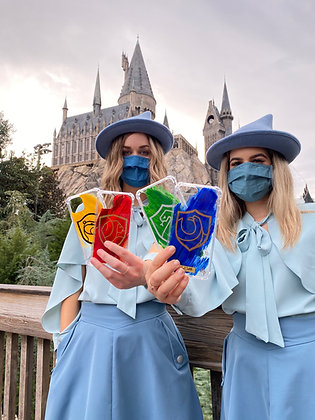 Clever Ravenclaw