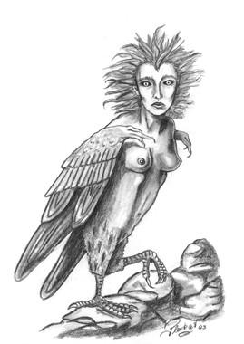 Harpye.jpg