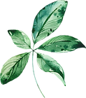MajesticGreen-floralelements-01.png
