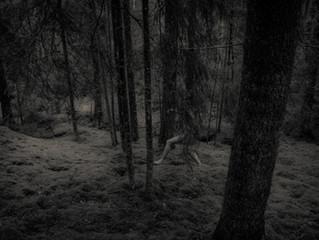 November darkness