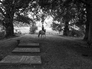Pictures from a country churchyard....