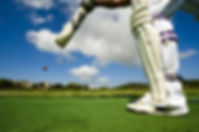 worm's eye view of cricket