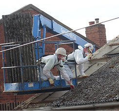 Asbestos Roof Removal Hoist.png