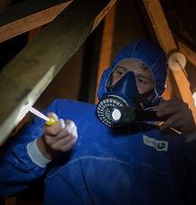 HAR Asbestos Surveys - 022.jpg