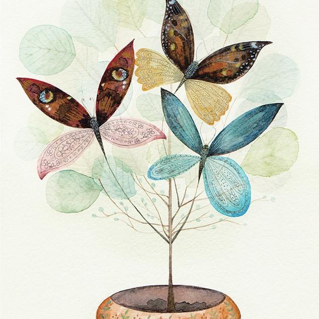Butterlyptus Tree