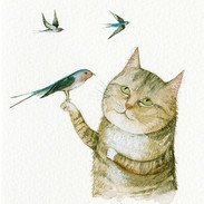 Polly and the Swallows