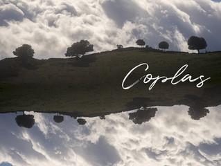Coplas, le nouveau spectacle de Péninsule