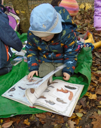 Woodland Tales at Claverdon School