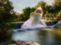 Round Rock TX.jpg