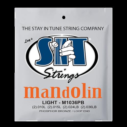MANDOLIN STRING