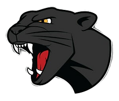 Panther%20head_edited.png