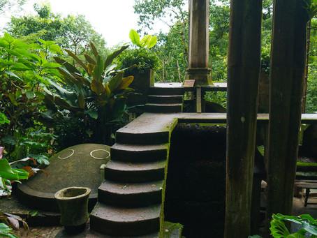 Las Pozas: The Surreal Garden