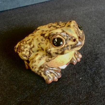 Small Ceramic Frog