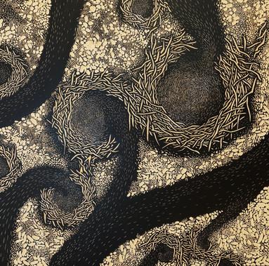 Open nests.GloriaCalderonSaenz.jpg