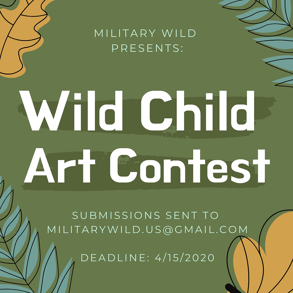 Military Wild art contest announcement