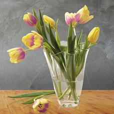 geschwungene Glaskönig Vase