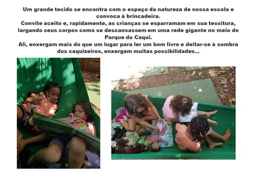 Dente-de-Leão Manhã - 09.09.21 2.PNG
