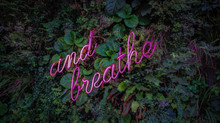 Why is Breathing so Important in Pilates?