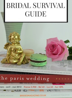 Real Life Bridal Survival Guide