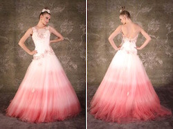 Ombre Wedding Dresss