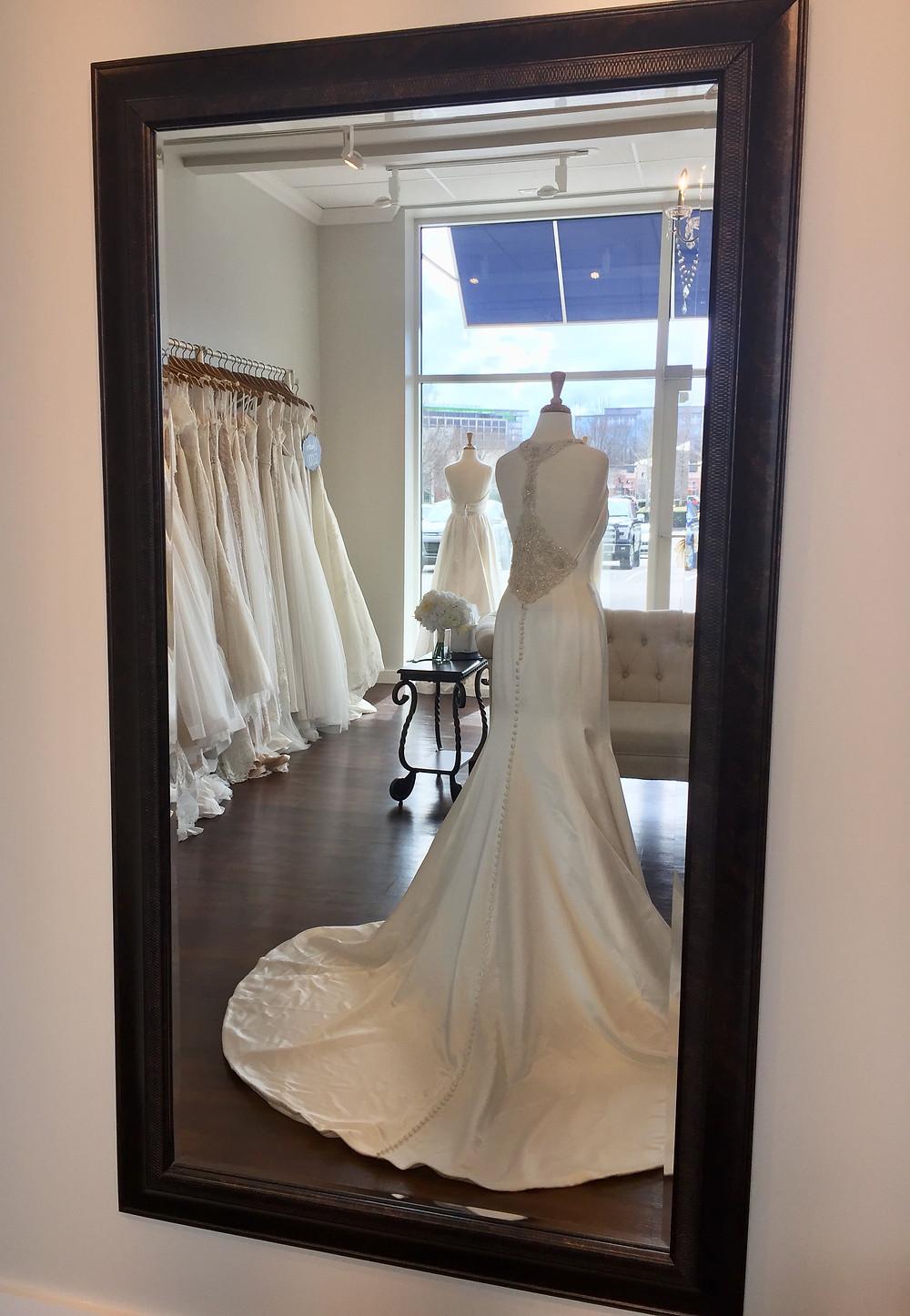 Fabulous Frocks - Dress Detail (rear)