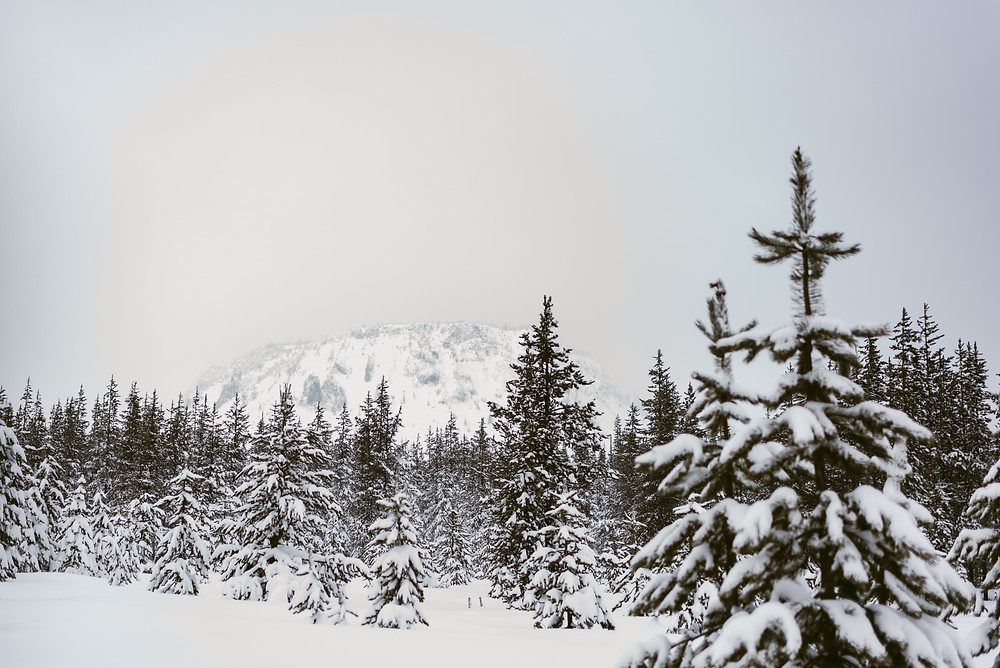 Snowshoeing Adventures in Santiam Pass, Oregon by Mountainaire Gatherings Photography