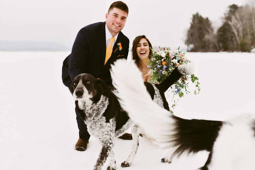 Bride and groom laugh as they're surrounded by dogs on their wedding day
