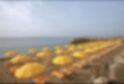Screen Shot 2020-05-19 at 9.24.06 AM.png