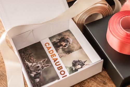 Luxe cadeaubon drukwerk met bronsfolie (SPOT-UV)