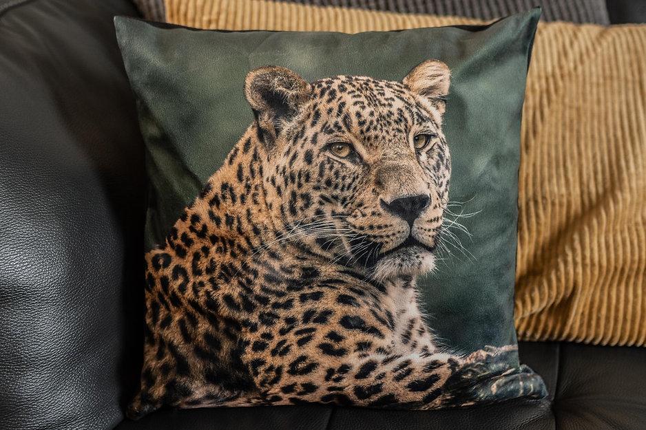 Kussen met een de afbeelding van een luipaard