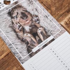 Puppy verjaardagskalender